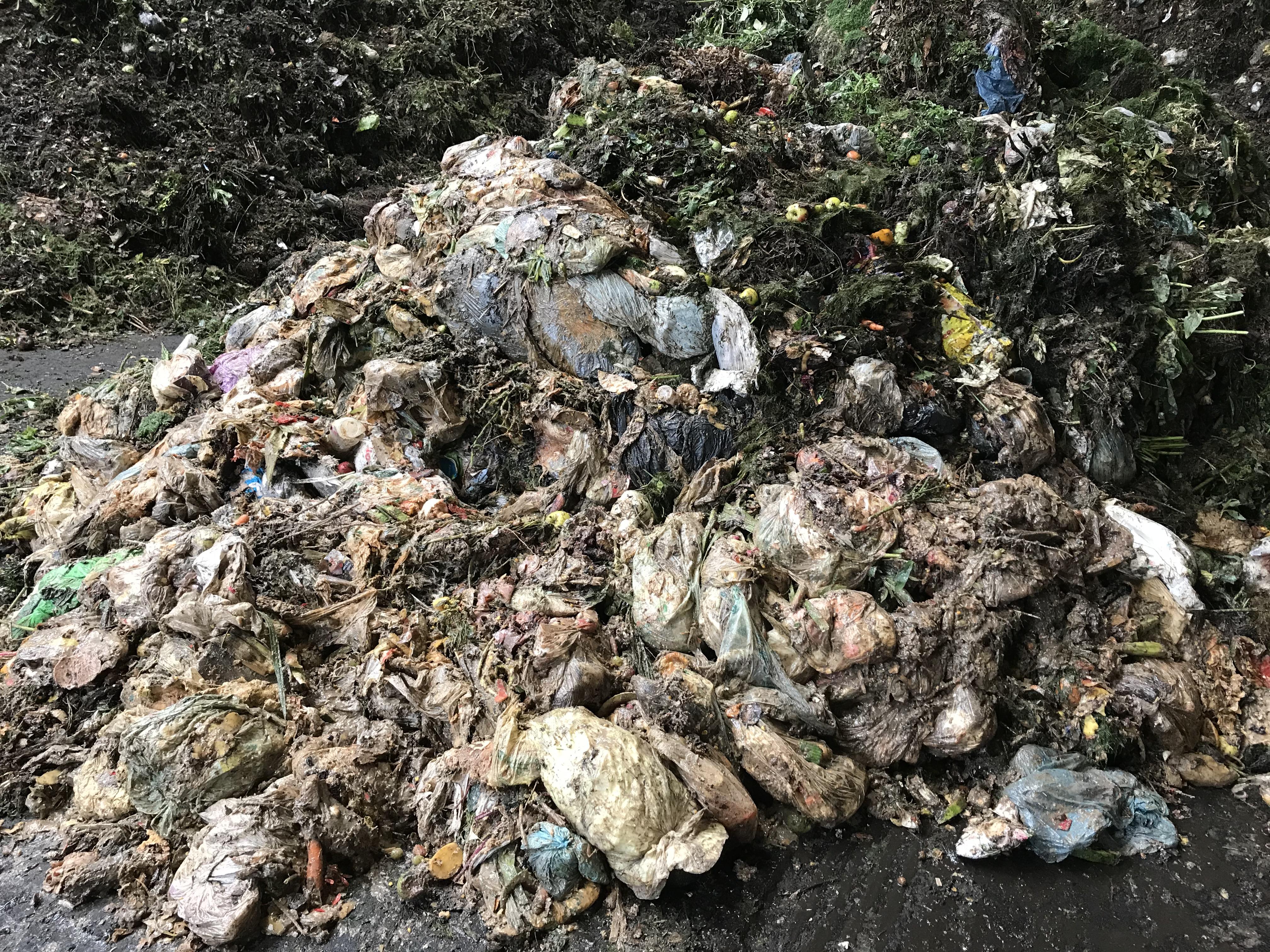 Zu viele Plastiktüten befinden sich aktuell in den braunen Biotonnen im Landkreis.