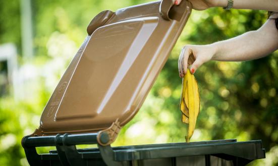 In den warmen Sommermonaten können einige Tipps zum richtigen Umgang mit den Bioabfällen beachtet werden.
