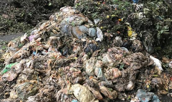 Störstoffe im Bioabfall
