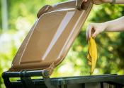 Nützliche Sommertipps für die Biotonne